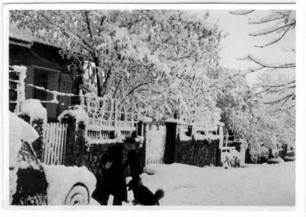 neige2-1
